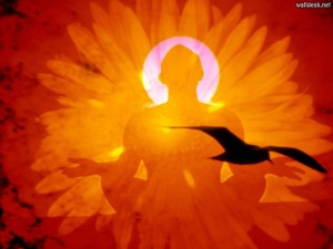 Вселенная Мудрости. Гуру-йога.