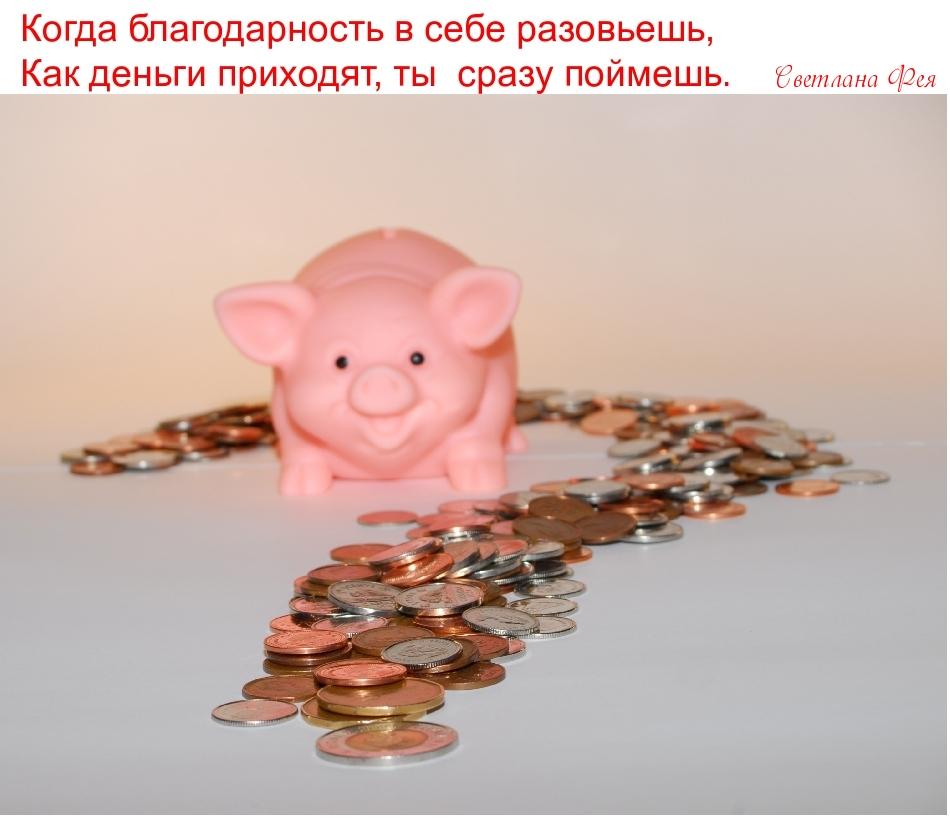 Когда благодарность в себе разовьешь, Как деньги приходят, ты  сразу поймешь.