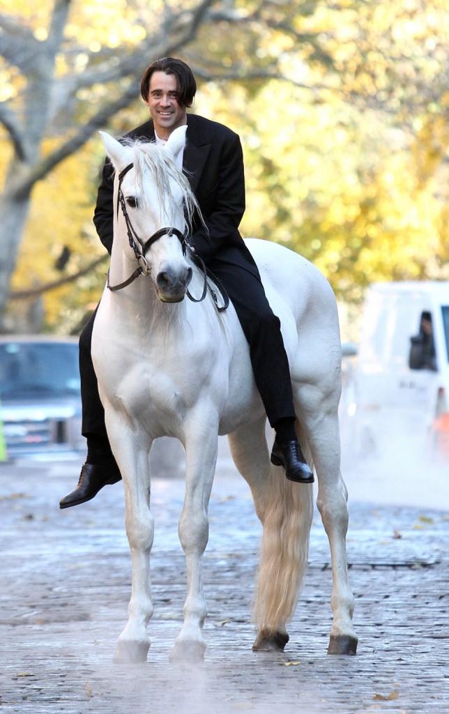 Всё про принца на белом коне
