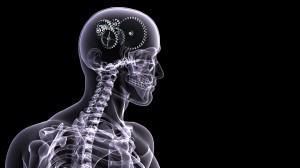 Возможности «ленивого» мозга