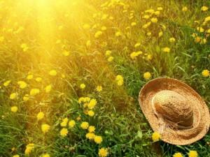 Солнце - это жизнь