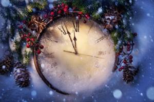 С чем ассоциируется Новый год у россиян?