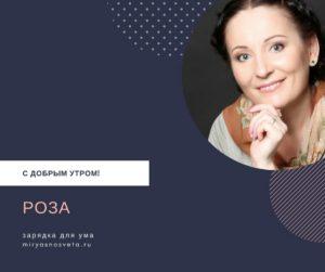 Светлана Фея: Роза