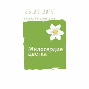 Милосердие цветка