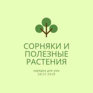 Сорняки и полезные растения