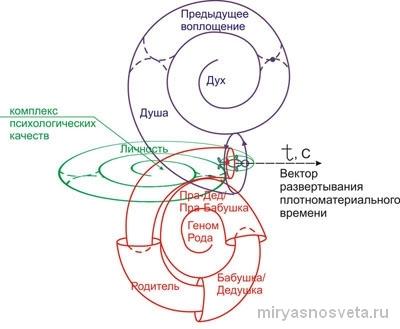 Вектор развития полноматериального времени