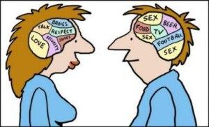 20 отличий мозга мужчин от мозга женщин